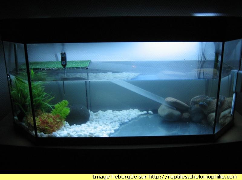 aquarium pour tortue trouvez le meilleur prix sur voir avant d 39 acheter. Black Bedroom Furniture Sets. Home Design Ideas
