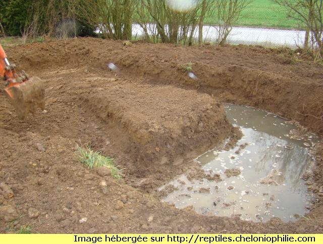 le nouveau bassin  de Cyril 1298730674-dsc02487
