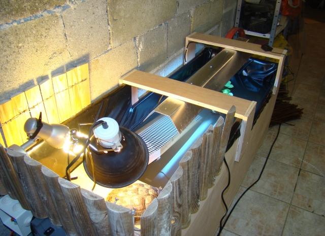 à vendre aqua fabrication maison 1312401505-dsc02270
