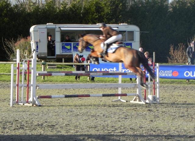 championnat poney lamotte beuvron